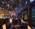 hard rock hotel bali - Starz Diner