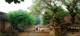 tenganan bali age village