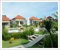 bali bule homestay  garden